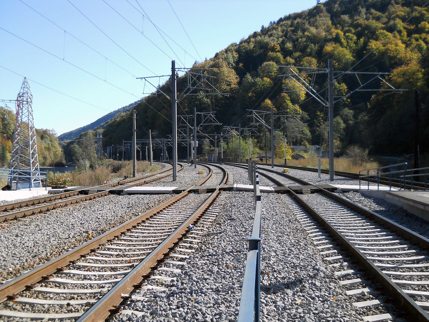 Photo: four railway tracks with catenary in a slight bend to the left; on both sides, forest